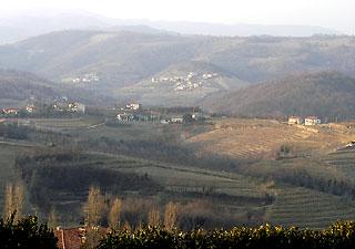 Collio in Friuli