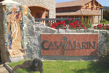 Casa Marin Winery