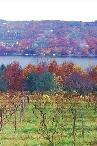 Finger Lakes in autumn